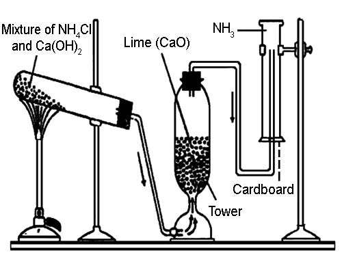 lab preparation of ammonia