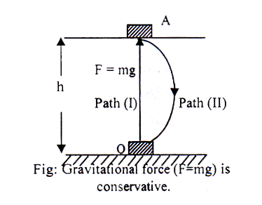 Gravitational Force