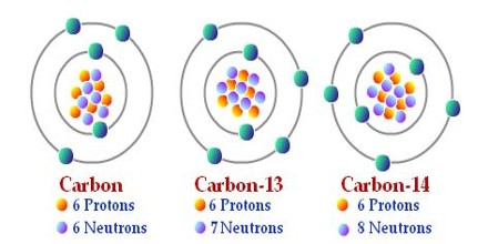 isotopes used carbon dating Carbon-14 is a radioactive isotope used to date organic material its consistent rate of decay allows the age of an object to be determined by the proportion of carbon-14 to other carbon.