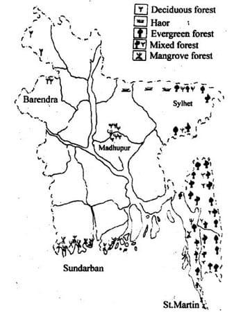 pleistocene uplands in bangladesh 1