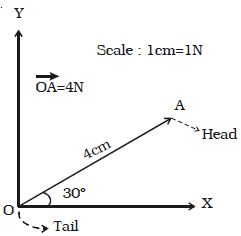 Representation of vector qs study ccuart Images