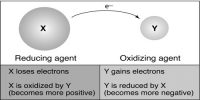 Explain Oxidation and Reduction takes place simultaneously