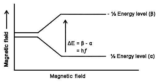 Magnetic Resonance Imaging 2
