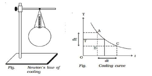 Newton's Law of Cooling 1