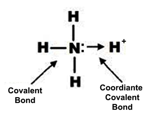 which type of bonds is present in ammonia ion