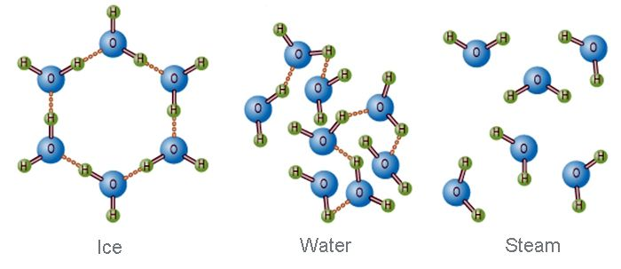 molecular structure of ice