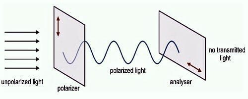 Polarizer and Analyzer 1