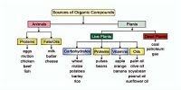 Sources of Organic Compounds