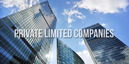 Define Private Company