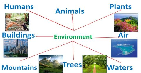 Causes of Environment Pollution