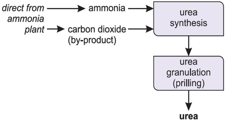 Production of Urea