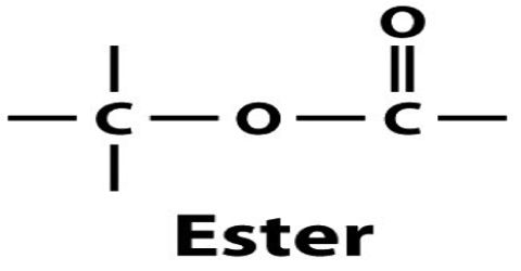 What are Esters?