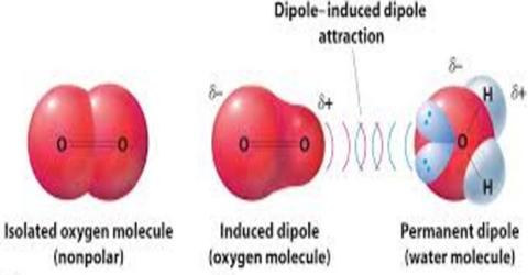 Dipole-Induced Dipole Force