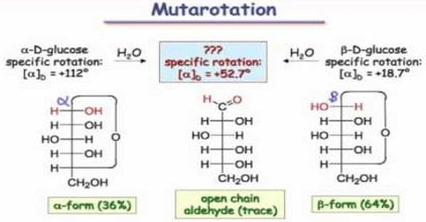 Muta-rotation: Definition and Description