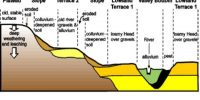 Soil Formation Process