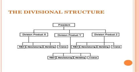 Differences between Functional and Divisional Structure