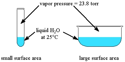 Vapor pressure of liquid