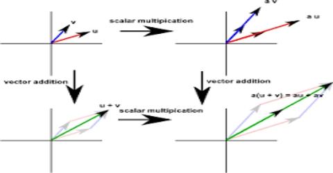 Vector Properties