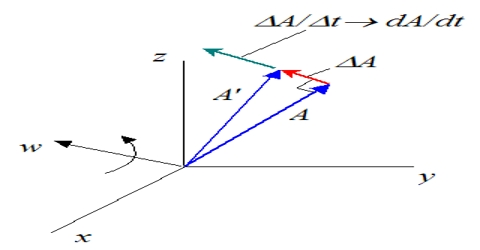 Differentiation of a Vector