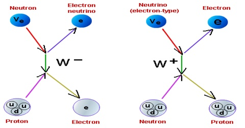 Weak Nuclear Force: Definition in Dynamics