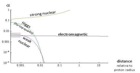 Comparison of Intensities of the Fundamental Force
