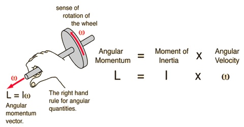 Vector form of Angular Momentum