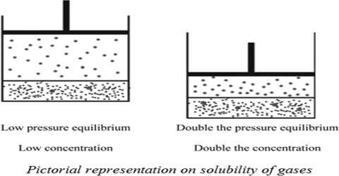Influence of Pressure on Solubility