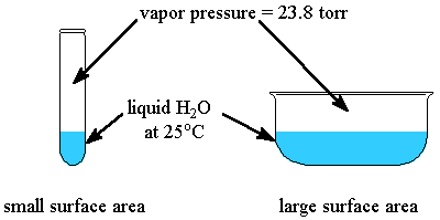 lowering of vapour pressure pdf