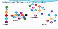 Meaning of Grapevine Communication