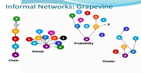 Which Factors are Liable for Operating Grapevine Communication?