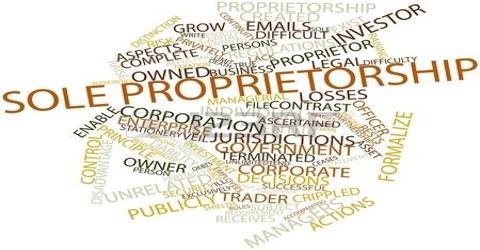 Who is Proprietor?