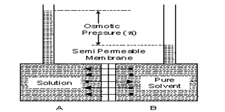 Semi-permeable Membrane: Vapour Pressure Theory