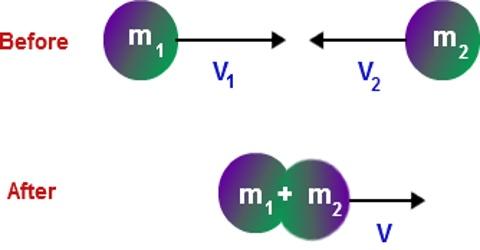 Inelastic Collision Qs Study