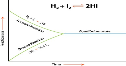 Activity and Activity Co-efficient in Chemical Equilibrium