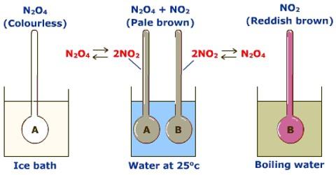 Effect of Temperature on Equilibrium
