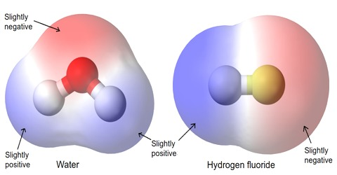 Inter Atomic Force in Liquids