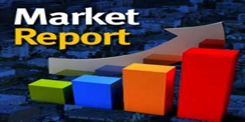 Essential Elements and Factors of Market Report