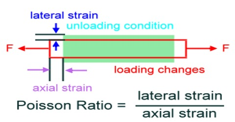 Poisson's Ratio Explanation