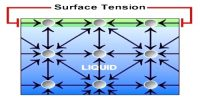 Demonstrate Surface Tension Effect