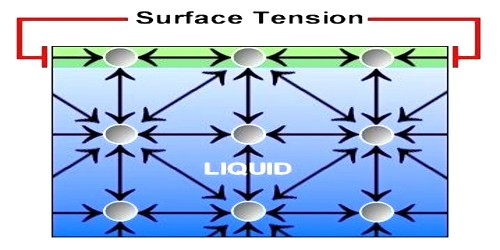 Explanation of Surface Tension by Laplace's Molecular Theory
