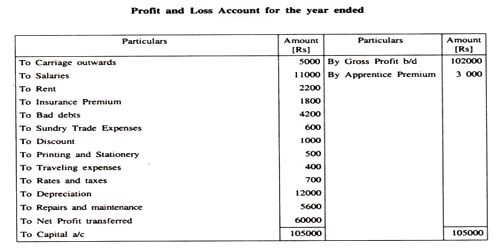 profit and loss account format pdf