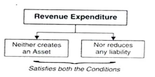Revenue Expenditure