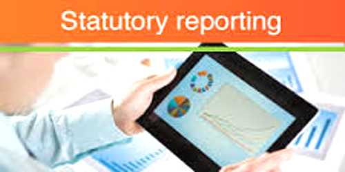 Meaning of Statutory Report