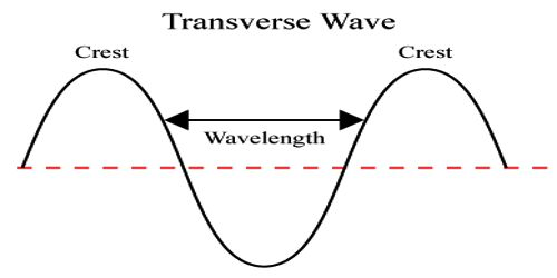 Characteristics of Transverse Waves
