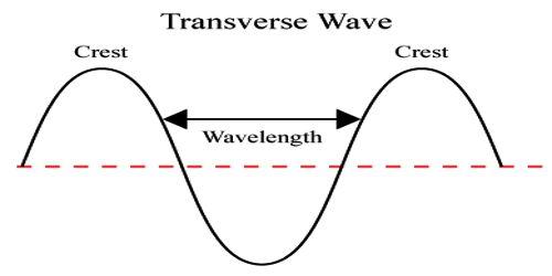 Characteristics of Transverse Waves
