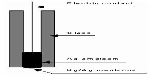 Amalgam Electrode in Half-Cells