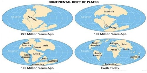 Continental drift qs study according to wegener all the continents formed a single continental mass a mega ocean surrounded by the same the super continent was named pangaea sciox Image collections