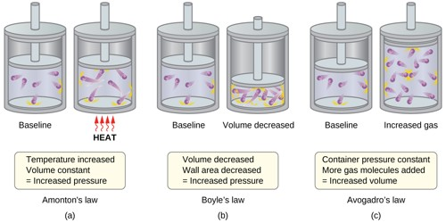 Fundamental Postulates of Gas Molecules