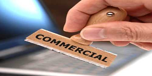 Commercial Policy in Developing Country