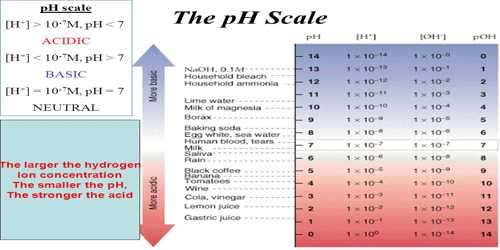 hydrogen ion concentration- the ph scale